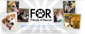 2017 Calendar Contest is here!