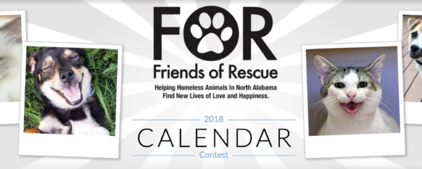 The 2018 Calendar Contest is Here!